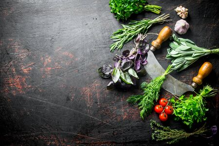 Fresh herbs from the home garden with knife, tomatoes and garlic. On dark rustic background 写真素材
