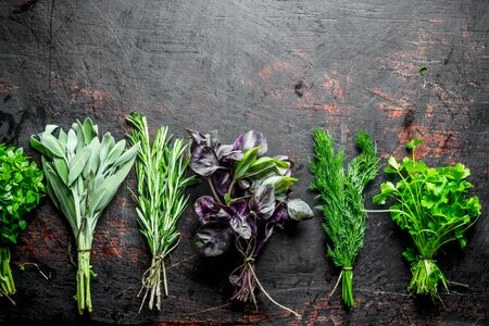 The range of bundles of different herbs. On dark rustic background