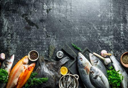 Assortment of various fresh fish. On dark rustic background