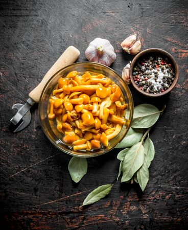 Canned mushrooms in a glass bowl with Bay leaf, spices and garlic. On dark rustic background