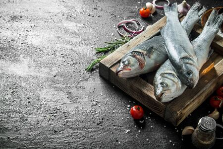 Raw fish seabass on a tray with the rosemary. On black rustic background Stok Fotoğraf