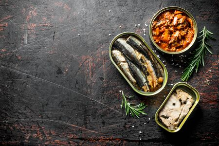 Canned fish in tin cans of rosemary. On dark rustic background Stok Fotoğraf