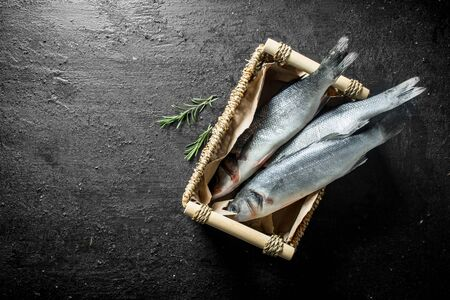 Raw seabass fish in the basket. On black rustic background