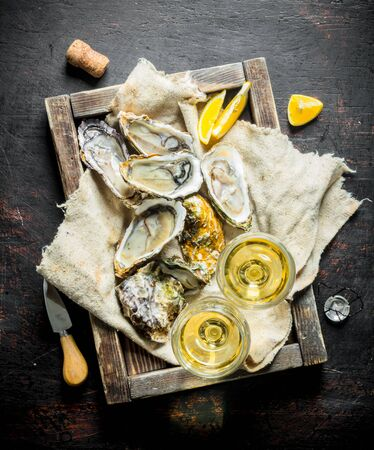 Raw oysters on a rag in a wooden tray with glasses of white wine. On dark rustic background Banco de Imagens
