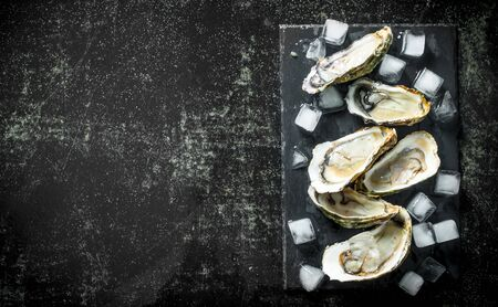 Seafood. Opened raw oysters on a stone Board with ice cubes. On dark rustic background Banco de Imagens