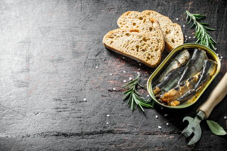Sprats in a tin with sliced bread and rosemary. On dark rustic background Banque d'images - 124763570