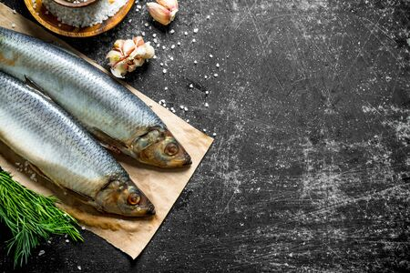 Salted herring on paper with garlic and spices. On dark rustic background