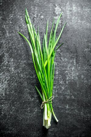 Bunch of green onion. On dark rustic background Stok Fotoğraf