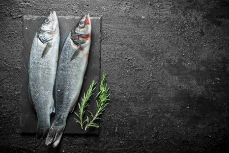 Fresh raw fish on a stone Board with rosemary. On black rustic background