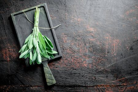 Bunch of fresh salvia on the cutting Board. On dark rustic background Stok Fotoğraf