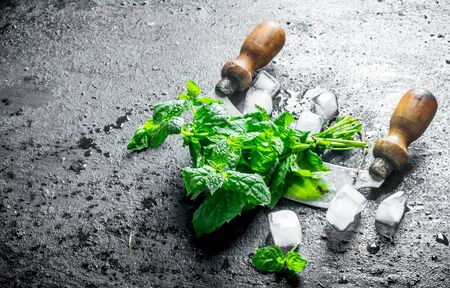 Freshly cut mint from the home garden with pieces of ice. On black rustic background Stok Fotoğraf