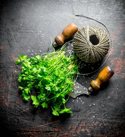 Fresh parsley with twine. On dark rustic background Imagens - 124763792