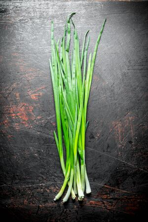 Green onion for salad. On dark rustic background