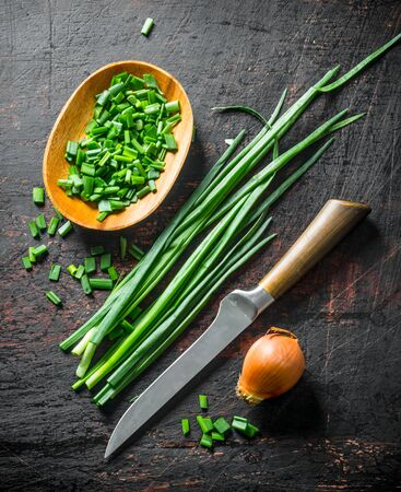 Onions and green onions. On dark rustic background Stok Fotoğraf