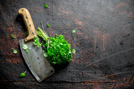 Fresh Basil with a big knife. On dark rustic background