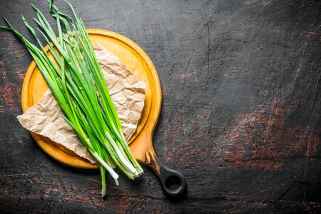 Fresh green onion on paper. On dark rustic background