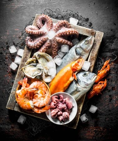 Delicious fresh seafood on a wooden tray with ice. On dark rustic background Stok Fotoğraf - 124763668