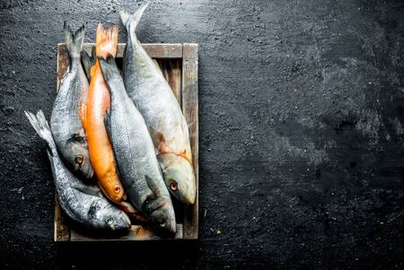 Various raw fish on wooden tray. On black rustic background Banque d'images - 124763609