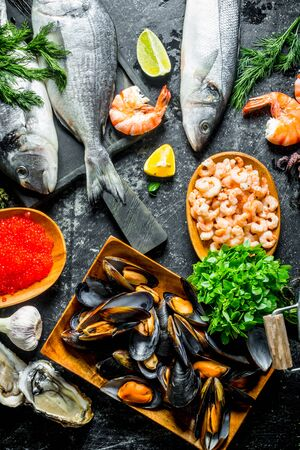 A variety of delicious seafood. On rustic background Stok Fotoğraf - 124763619
