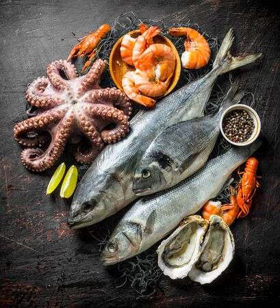Fresh seafood with spices and lime slices. On dark rustic background Banque d'images - 124763627