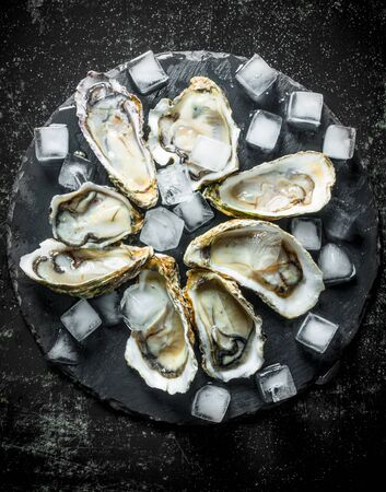 Raw oysters on a stone Board with ice pieces. On dark rustic background Banco de Imagens