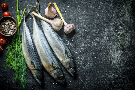 Freshly caught mackerel fish. On dark rustic background Banque d'images - 124763628