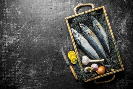 Raw mackerel with onion, garlic and lemon slices on tray. On dark rustic background