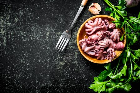 Baby octopus on a plate with parsley and garlic cloves. On dark rustic background