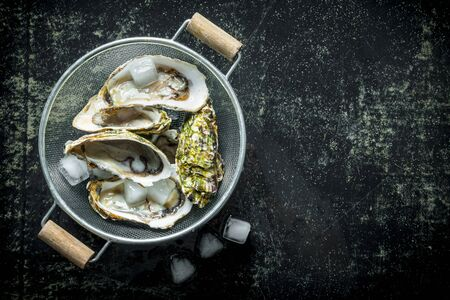 Fresh oysters in a colander with ice. On dark rustic background