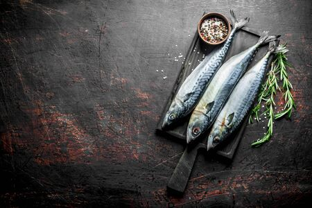 Fresh raw mackerel with spices and rosemary. On dark rustic background