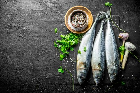 Raw mackerel with parsley and spices. On black rustic background