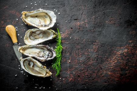 Fresh oysters with dill and a knife. On dark rustic background