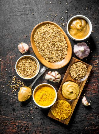 Assortment of different types of mustard with garlic. On dark rustic background Фото со стока
