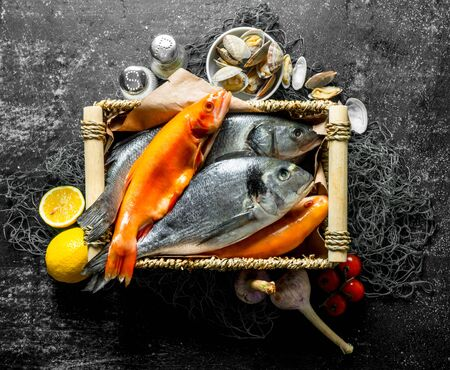 Raw fresh fish with oysters and spices. On dark rustic background