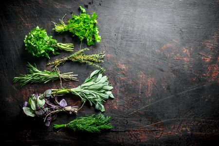 Bunches of fresh herbs for the salad. On dark rustic background Stok Fotoğraf