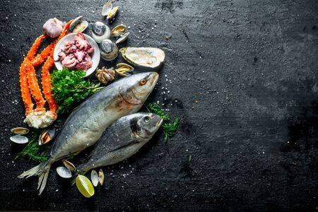 Seafood. Different fish with oysters, crab and baby octopus. On black rustic background