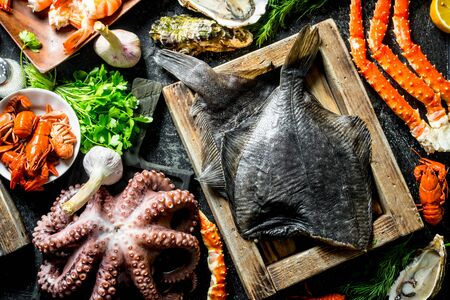 Various fish, octopus, shrimp and crayfish with herbs. Top view