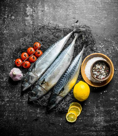 Fresh fish mackerel on a fishing net with tomatoes, garlic, lemon and spices. On dark rustic background