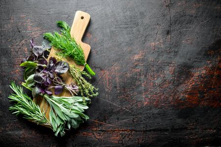 Various types of useful herbs on a wooden cutting Board. On dark rustic background