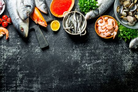 Fresh fish with caviar, shrimp and oysters. On rustic background