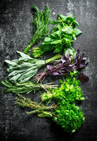 Various fresh herbs from the garden. On dark rustic background