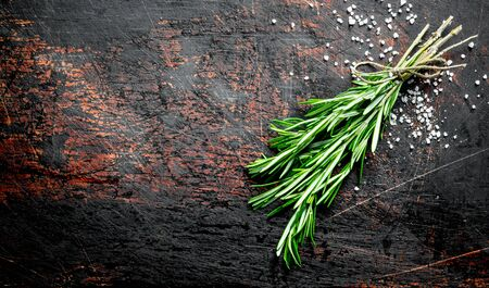 Rosemary grown in the home garden. On dark rustic background