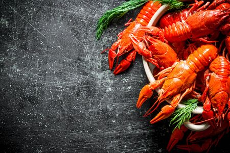 Delicious fragrant boiled crayfish with dill. On dark rustic background