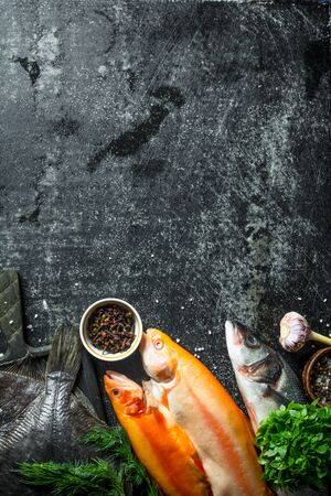 Raw fish with herbs and spices. On dark rustic background 写真素材