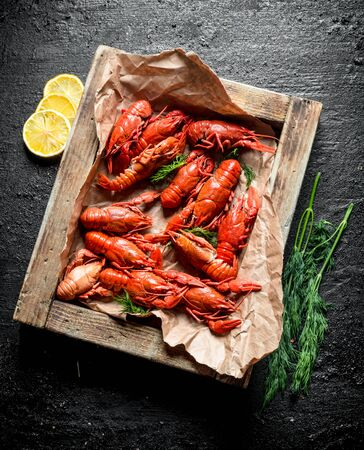 Boiled crayfish on paper in tray with dill and lemon. On black rustic background Stok Fotoğraf