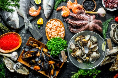 Healthy diet food. A variety of fresh seafood. On rustic background 写真素材