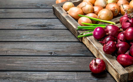 Red and yellow onions on tray and a bunch of green onions. On wooden background