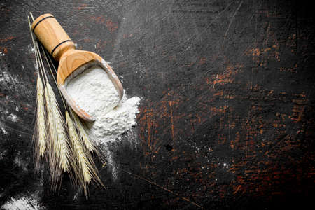 Flour in a wooden scoop with spikelets. On dark rustic background Stock Photo
