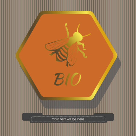 depicts: Striped gray background depicts a hexagon orange color, inside of which depicts a bee with the word BIO