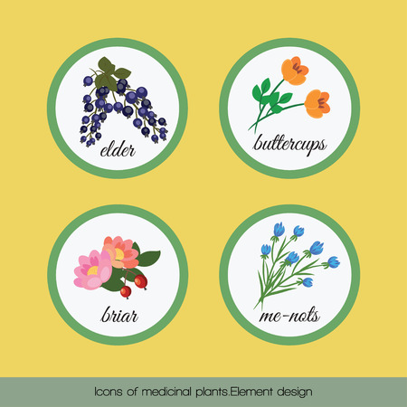 sedative: On a yellow background set of icons of medicinal rasteniy.Element design.